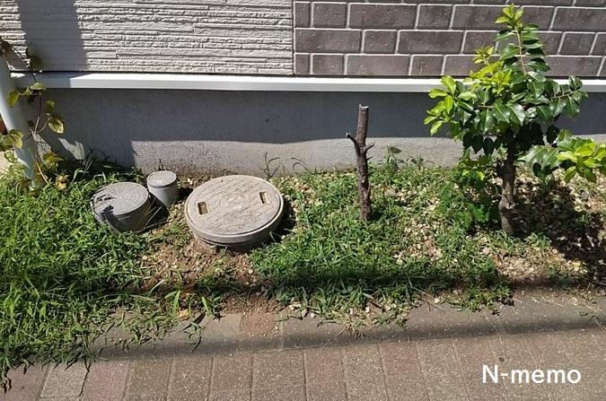 雑草だらけの花壇